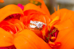 Wedding Rings and Flowers Stock Photos