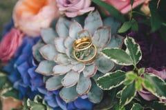 Wedding rings on flowers Stock Image