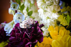 Wedding Rings on Flowers Royalty Free Stock Photos
