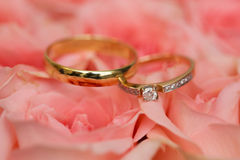 Wedding rings and flowers. Gold wedding rings on roses Stock Image