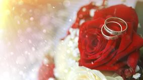 Wedding rings with flowers stock footage