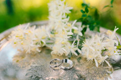 Wedding rings on the flowers of jasmine on a metallic silver tra. Y. Wedding jewelry Stock Image