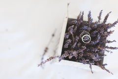 Wedding rings on the flowers of lavender. Close-up Stock Photo