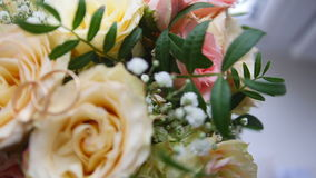 Wedding rings on flowers - rack focus. Close up stock video footage