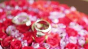 Wedding rings on flowers. Rasfokus on wedding rings lying on bridal bouquet stock footage