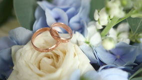 Wedding rings on flowers. At wedding shoots wedding rings on flowers stock video footage