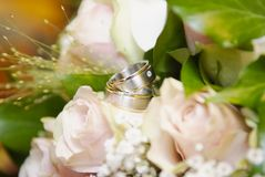 Wedding rings and flowers on soft blurred background Stock Image