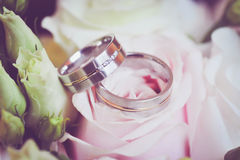 Wedding rings on flowers. Two platinum wedding rings with flowers Royalty Free Stock Photography