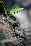 Wedding Rings in the Forest. Set of silver and diamond wedding rings in the forest Royalty Free Stock Photos