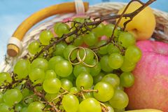 Wedding rings on the fruit Stock Photo