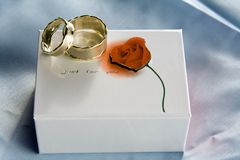Wedding rings on gift box Royalty Free Stock Photos
