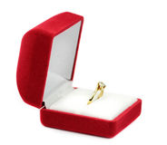 Wedding rings in a gift box Stock Photography