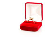 Wedding rings in a gift box Stock Image