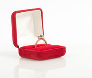 Wedding rings in a gift box Royalty Free Stock Photos