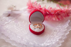 Wedding rings. Gold wedding rings on lace Stock Photography