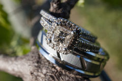 Wedding rings on grapevine. Wedding rings macro on grapevine Stock Images