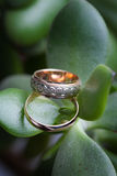 Wedding rings on the green leaf.  Stock Images