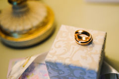 Wedding rings for groom and bride Stock Image