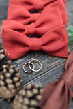 Wedding rings on the groom tie Stock Photography
