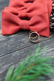 Wedding rings on the groom tie Royalty Free Stock Photography