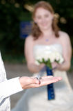 Wedding rings on the grooms palm with the bride Stock Photography