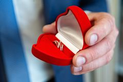 Wedding rings in hand. wedding rings in the hands of the groom. royalty free stock photography