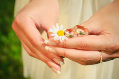Wedding rings on hands of the bride on a camoline. Rings of newly-married couple on hands of bride Stock Photo