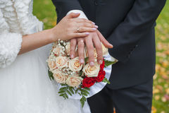 Wedding rings on hands of bride and groom Stock Image