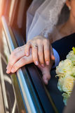 Wedding rings on the hands of the bride and groom Royalty Free Stock Image