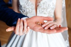 Wedding rings in the hands of the bride and groom. royalty free stock photography