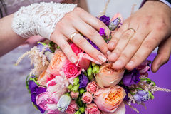 Wedding rings on the hands of the bride and groom Royalty Free Stock Images
