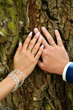 Wedding rings. Hands of bride and groom with wedding rings on tree bark background Royalty Free Stock Photo