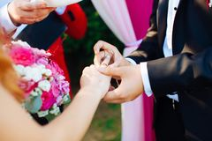 Wedding rings and hands of bride and groom. young wedding couple at ceremony. matrimony. man and woman in love. two happy people c royalty free stock images