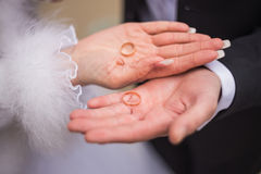 Wedding rings on hands. Golden wedding rings on hands Stock Photos
