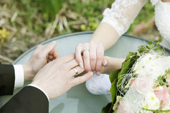 Wedding rings and hands of married couple Royalty Free Stock Image