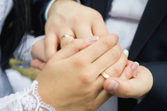 Wedding rings in the hands of men and women Royalty Free Stock Image