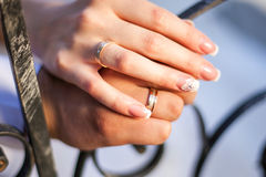 Wedding rings on hands of the newlyweds. Stock Images