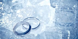 Wedding rings on ice Royalty Free Stock Image