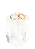 Wedding rings on the ice cube Royalty Free Stock Image