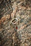 Wedding rings and ladybugs Royalty Free Stock Photography