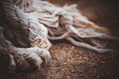 Wedding rings laying on rope Stock Image