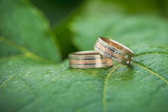 Wedding rings on leaf Stock Images