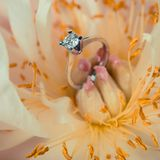 Wedding rings lie on a beautiful bouquet as bridal accessories.  Royalty Free Stock Image