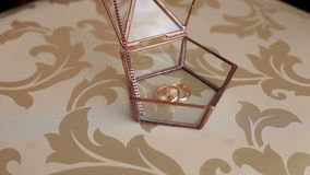 Wedding rings lie in a glass box, close-up. stock video