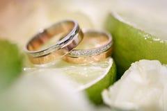 Wedding rings lie on a lemon slice Stock Image