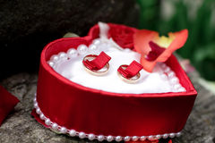 Wedding rings lie neatly in a red box. For wedding Royalty Free Stock Images