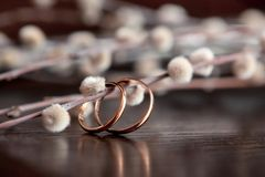 Wedding rings lie on a wooden table. Willow twigs on wooden background. Signs and Symbols royalty free stock photography