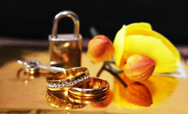 Wedding rings, love and happy, orchid Stock Images
