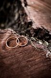 Wedding rings lying on a tree stump in the woods. Wedding accessories on a wooden background. Gold Stock Photos