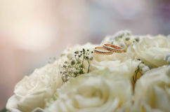 Wedding rings lying on white flowers bouquet. Gold wedding rings lie on the white delicate roses in the sunlight Royalty Free Stock Image